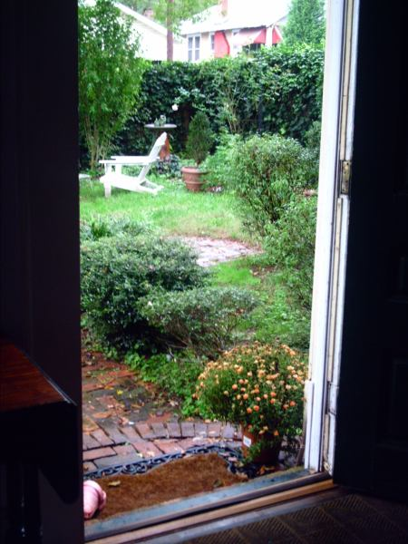 looking outside the front door into the garden