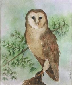 Barn Owl, J. Kohut-Bartels, 1999, watercolor