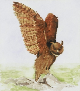 """European Eagle Owl"", janekohut-bartels, 2003, watercolor"