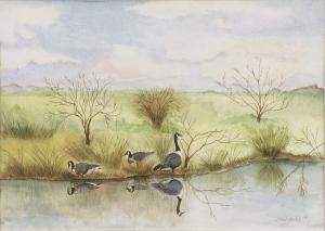 Canadian Geese in Early Winter, janekohut-bartels, watercolor, 2005