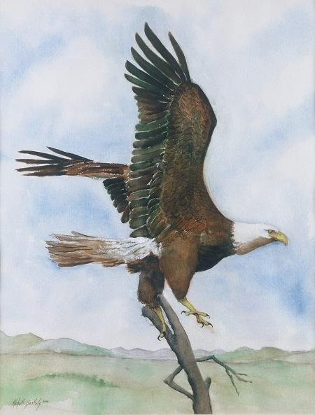"""Eagle"" Jane Kohut-Bartels, watercolor, 2005"