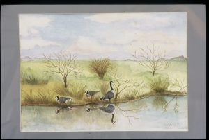 Marsh Geese, watercolor, Jane Kohut-Bartels, 2007