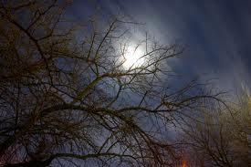 Full Moon, March 2011