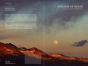 PItcher of Moon, available from Createspace, Amazon.com