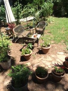 August Backyard 1