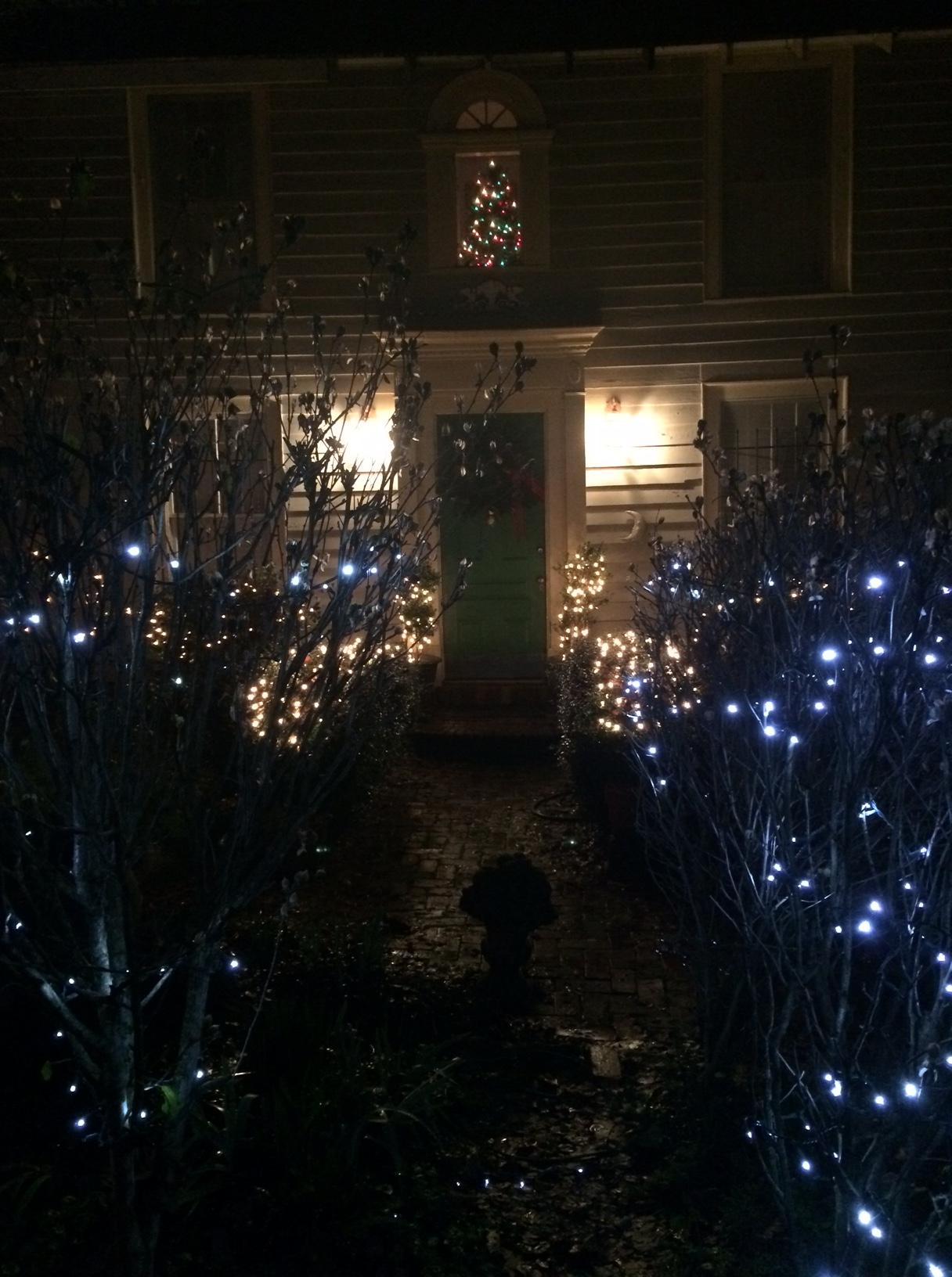 Christmas outside.JPG