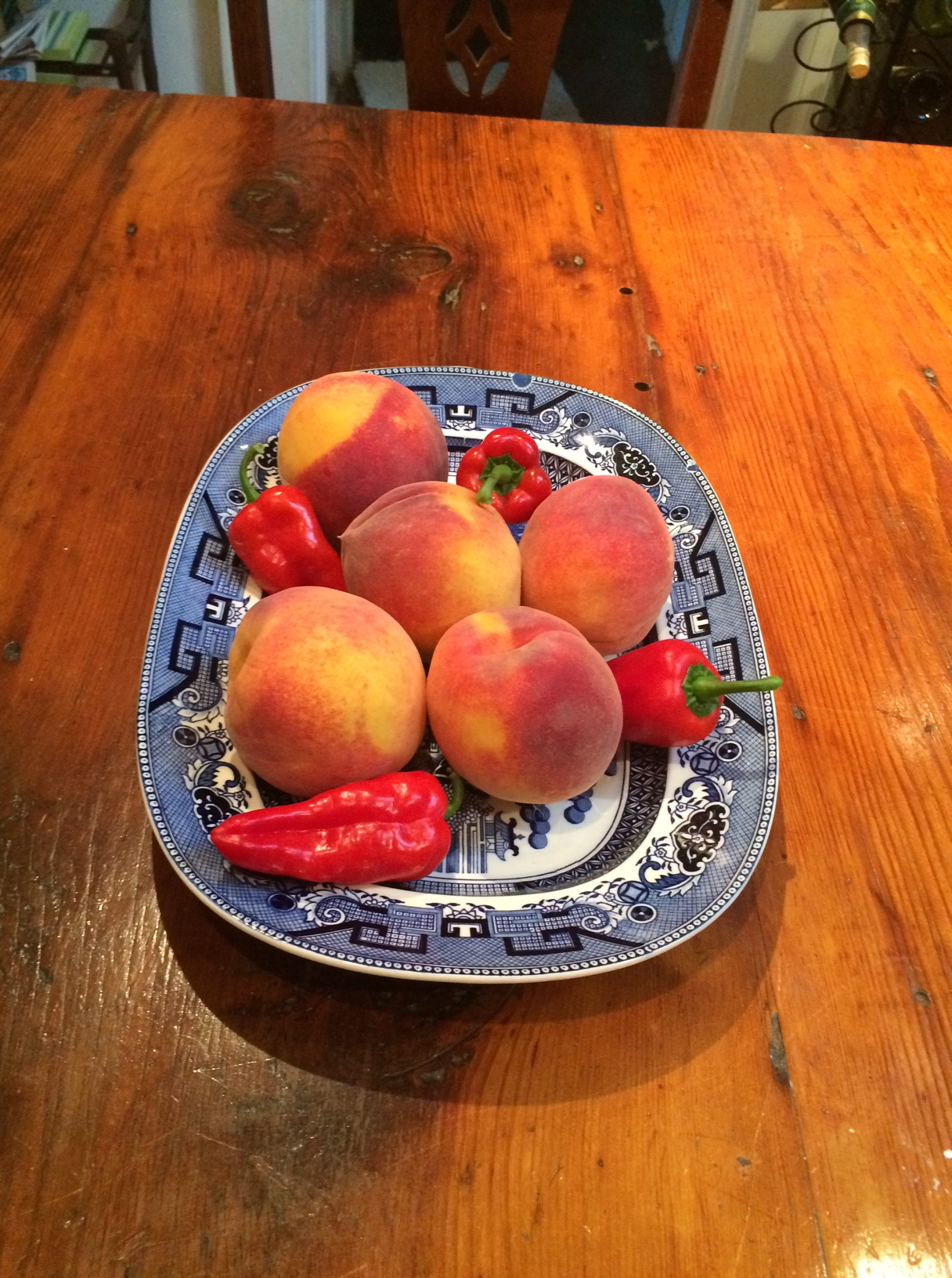 Garden peaches, 2016.JPG