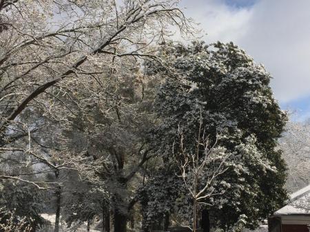 snowfall 2017 4