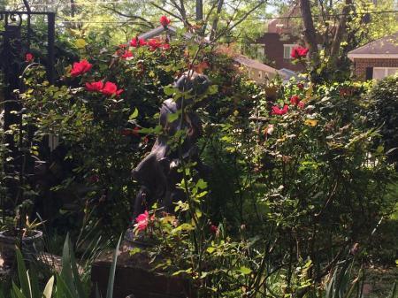 Noon Rose.jpg