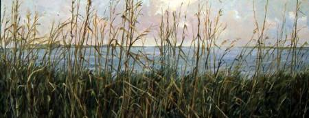 MarshGrass_copy_op_800x306